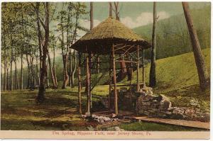 1907-15 Nippono Park Near Jersey Shore PA The Spring J.C. Mick RARE DB Postcard