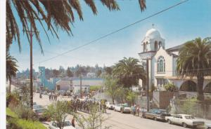 Street View , SEBASTOPOL , California , 50-60s