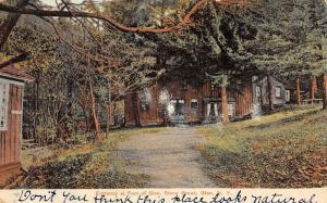 Glen New York Stony Brook Foot Of Glen Entrance Antique Postcard K80411