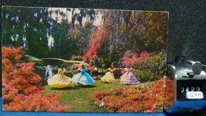 STD Vintage Dancing Southern Belles Cypress Gardens Florida Posted 1975