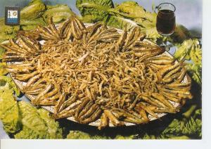 Postal 039372 : Costa del Sol. Platos tipicos. Chanquetas y Boqueronas