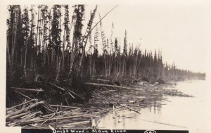 RP: Driftwood , Slave River , N.W.T. , Canada , 10-20s