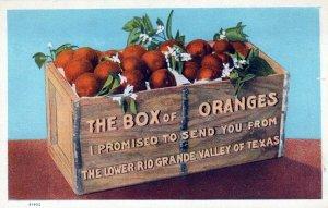 The Box Of Oranges Lower Rio Grande Valley Texas Vintage White Border Post Card