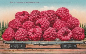 SOUTHERN PACIFIC Railroad Co. , 00-10s ; Exaggerated Car load of Raspberries