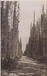 Snow Peak Avenue Canada Canadian Antique Postcard