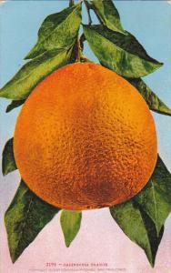 Edward H Mitchell California Orange