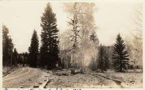 RP: Dixie National Forest , UTAH , 1937 ; Cedar Creek Road