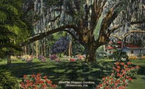 Oriental Gardens Jacksonville FL 1949