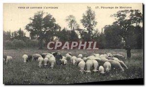 Old Postcard Folklore Auvergne Pasture sheep