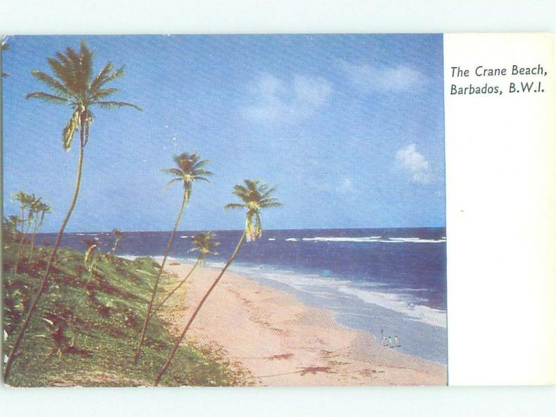 Pre-1980 NICE VIEW Crane Beach In St. Philip Barbados i5184