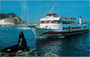 Catalina Island California~Countess Steamer Passengers Watch Seal~1970s