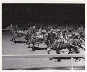 MEADOLANDS RACE TRACK, MATAI EXPRESS Comes Out Of The Pack, Wins Harness Race