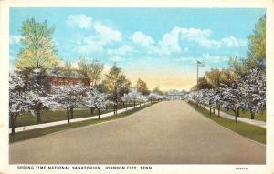 Johnson City Tennessee National Sanatorium Spring Time Antique Postcard K56326