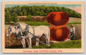 Where Tomatoes Are Tomatoes is Oconto Falls Wisconsin~Exaggerated~Farmer~1940s