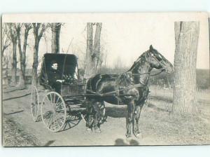 Old rppc HORSE SCENE Great Postcard AB1974