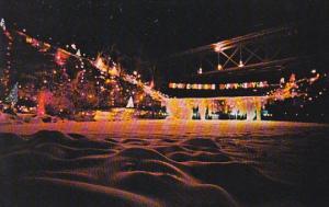 Annual Christmas Lighting At Ludlow Falls Ohio