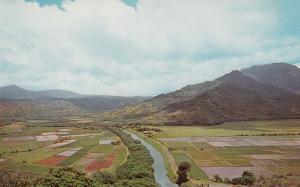 Hanalei Valley , KAUAI , Hawaii , 50-60s