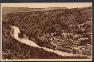 Herefordshire Postcard - General View, Symonds Yat    RT321