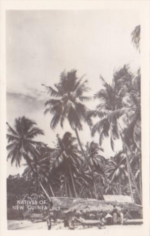 New Guinea Natives and Hut Real Photo