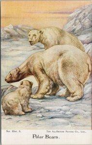 Polar Bears Cub All British Picture Co. Unused E. Sherman Postcard F54