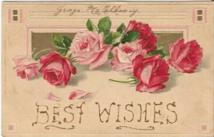 Vintage Postcard Pink Roses and Red Roses Scattered, Vintage Greeting Card