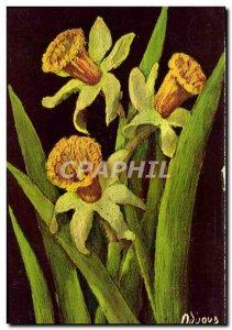 Old Postcard Narcissus Flower Bicolor