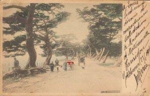 Japan Maikonohama Hand Tinted Postcard 03.77