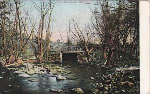 New Hampshire Dover Rollins Brook 1906