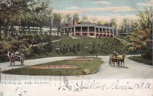 Illinois Peoria Bradley Park Pavilion 1907 Tucks