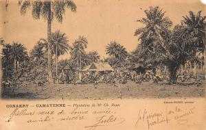 Guinea Conakry Camayenne, Plantation de Mr. Ch. Roux 1902