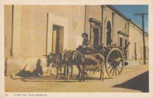 Donkey cart , Mexico , 1930s