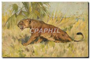 Old Postcard Leo Felin