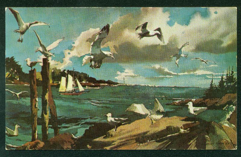 Laurence Sisson GULLS MAINE COAST Water Color Painting Postcard