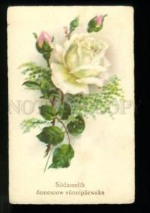 134513 GLAMOUR White ROSES Vintage color PC