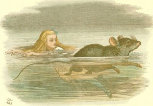 The Mouse Swimming Alice In Wonderland Victorian 1890 Book Postcard