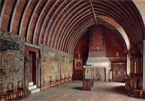 BT8012 Le chateau de Langeais la chapelle      France