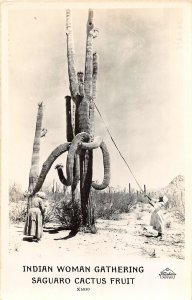 G21/ Native American Indian RPPC Postcard Gather Saguaro Cactus Fruit 8