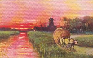 Ox Cart With Load Of Hay Windmill