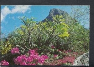 Mauritius Postcard - The Morne    T4161