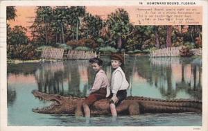 Florida Young Boys Riding Alligator Homeward Bound 1933 Curteich