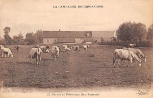 France La Campagne Bourbonnaise Ferme et Paturage Bourbonnais