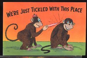 Vintage Humor We're Just Tickled...Monkey Animals