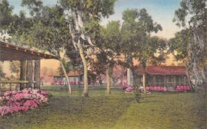 New Port Richey~Handcolored~Moon Lake Dude Ranch~Flowers Aroma Delicious c1938