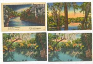 4 postcards, Suwannee River, Florida, 30-40s