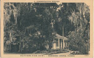 HOMOSASSA SPRINGS, view of Administration Building at Nature's Fish Bowl / 1940s
