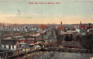 D81/ Sidney Ohio Postcard 1910 Birdseye View Homes Court House Stores 2