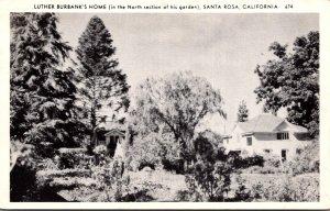 California Santa Rosa Luther Burbank's Home