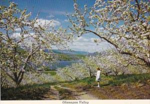 Canada British Columbia Okanagan Valley During Blossom Time