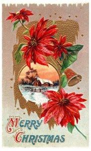 Christmas  , winter scene . Flowers