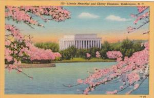 Washington D C Lincoln Memorial and Cherry Blossoms Curteich